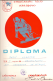 Diploma Vladimira Pajica-Paje