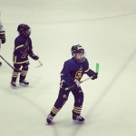 Stefan  na ledu