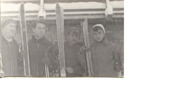 Dolfi, Mirko, Vlatko i Zeljko